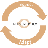 Inspect-Adapt-Transparency Modell